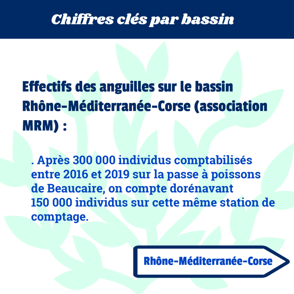 chiffre-cle-RMC