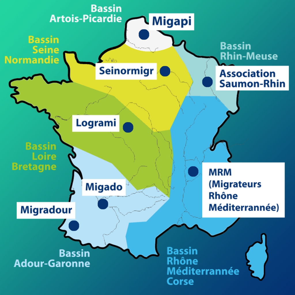 carte-associations-migrateurs